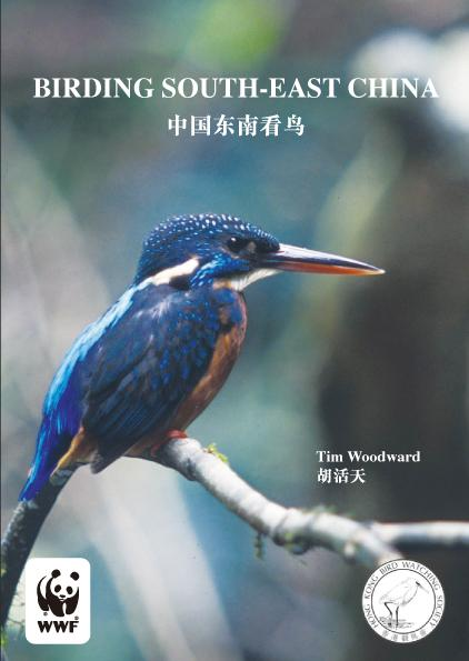 birding southeast china